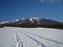 【スノーシューツアー】ツアーのクライマックス(裏山コース)