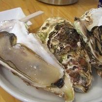松島・牡蠣