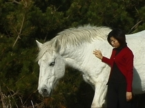 白い寒立馬(かんだちめ)