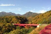 紅葉川俣川東沢
