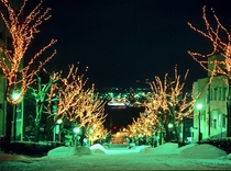 ■■八幡坂■■冬ヴァージョン☆