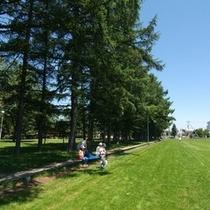 グリーンパークの400mのベンチはかつてギネスに「世界一長いベンチ」として掲載されました。