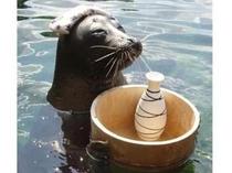 *箱根園水族館