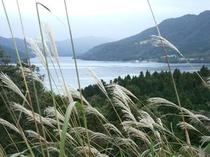 *秋の芦ノ湖風景