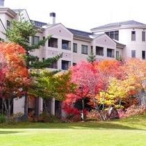 【秋】芝の緑と紅葉のコントラスト (ホテル裏側)