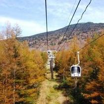 【秋】黄金色の落葉松とゴンドラ