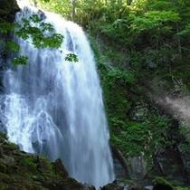 【春夏】落差も水量も豪快な小野川不動滝