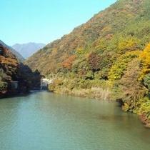 【丹沢湖】都心から90分で大自然を見る事が出来ます。