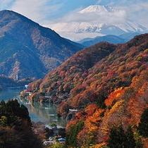 【丹沢湖と富士山】日本一の富士山と丹沢湖をご観賞下さい。