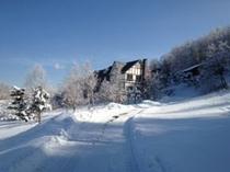 冬のボンシック