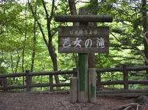 乙女の滝入り口