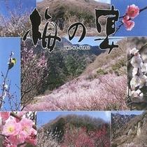 梅の宴2010
