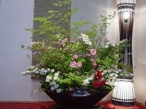 大鉢の生花