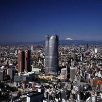 ◇六本木ヒルズ東京シティビュー◇