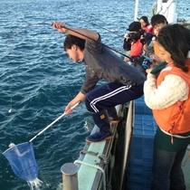 【金比羅丸】海しょくにん代表を務める金比羅丸、若手漁師たちが南三陸の海をご案内いたします!