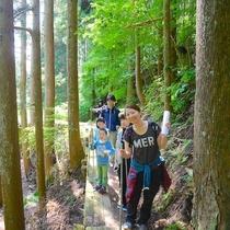 【田束山】『行者の道』ややハードですが、自然な状態の山の自然が楽しむことが出来ます、登頂目安約2時間