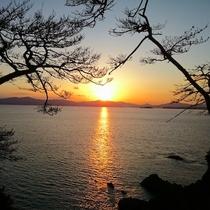 【尾崎神社】境内からの夕陽、鳥居からあずま屋(最先端部)に行く途中にシャッターチャンスが一杯あります
