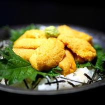 【旬のうに丼】(ハーフ丼は半分のサイズになります)口の中で甘くとろける新鮮生うにです