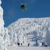 蔵王温泉スキー場■