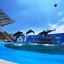 海のもり水族館