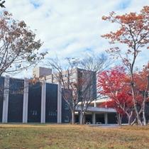 【周辺施設】東北大学
