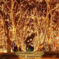 12月上旬〜12/31迄 仙台光のページェント開催