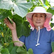 2017プールサイドバーベキュー☆朝獲れたて野菜提供の農家さん