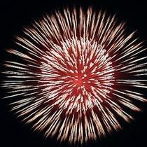 ■目の前で上がる大輪の花火♪大迫力!