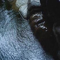 男子大浴場【黄金の湯】