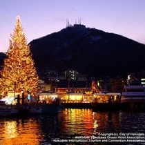 クリスマスツリーと函館山