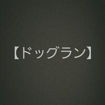 ◆ドッグfラン