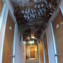 *【館内/廊下】天井に吊るされたカラフルなドライフラワー