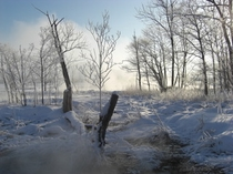 2月の屈斜路湖畔