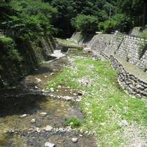 日本海へ注ぐ「益田川」の源流に位置し、そばには美しい清流が♪