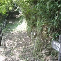 【敷地内一例】自然の中を歩ける3本の遊歩道あり!