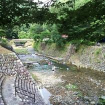 【川遊び】夏は清流で水遊びが楽しめます♪