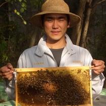 信州蜂蜜本舗の国産蜂蜜をどうぞ!