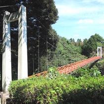 *周辺観光:遠島山公園(しらさぎ橋)