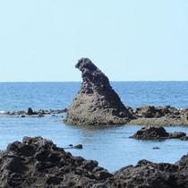 *周辺観光:ゴジラ岩