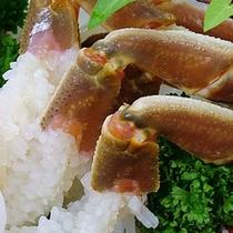 加能カニ(能登・加賀で水揚げされたズワイ蟹)の身がプリプリしたお刺身