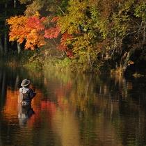 *【釣り/アクティビティ】水面に映る紅葉がとてもキレイです。
