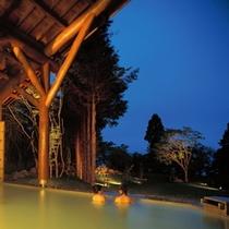 十和田湖西湖畔温泉 露天風呂(夜)
