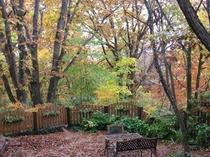 ノエルの秋の庭