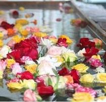 *【土曜限定/女性限定】生薔薇風呂♪豊かな香りとゴージャスな気分をお楽しみください★