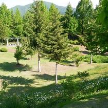 *庭園/7つのエリアからなるイングリッシュガーデン