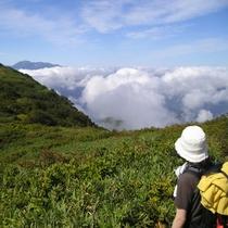 雨飾山登山中♪雲海の上に出ました