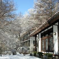 落葉松の木々の雪化粧・・・