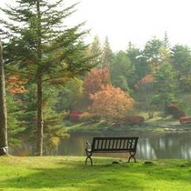 からまつ池を眺めながら・・・