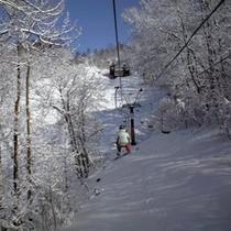 蓼科東急スキー場で、レッツスキー♪