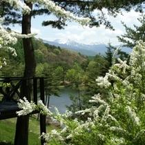 からまつ展望台から八ヶ岳を望む・・・
